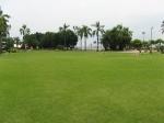 огромные изумрудные газоны. Таиланд. отель Амбассадор