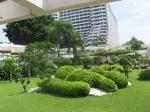 Таиланд. отель Амбассадор. на территории очень много зелени