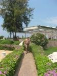 дорожка от пляжа к отелю. Таиланд. отель Амбассадор