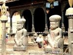 Йога-тур в Непал. хатха-йога для начинающих -27