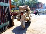 Йога-тур в Гималаи.Дели-15
