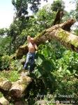 Йога-тур в Эквадор. Хатха-йога для начинающих-14