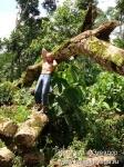 Йога-тур в Эквадор. Хатха-йога для начинающих-15