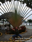 Йога-тур в Эквадор. Хатха-йога для начинающих-16