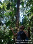 Йога-тур в Эквадор. Хатха-йога для начинающих-18