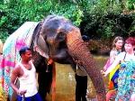 Мистическая практика жертвоприношения духу Ганеша  через кормление овощами, орехами и фруктами Индийских слонов, с возможным совместным купанием в реке