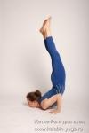 Хатха-йога для всех-5