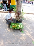 Йога-тур в Гималаи. Хатха-йога для начинающих-25