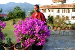 Йога-тур в Гималаи, Капан-44