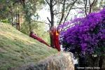 Йога-тур в Гималаи, Капан-58