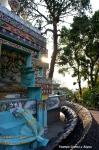 Йога-тур в Гималаи, Капан-59
