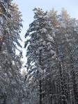 5.Йога.Зимние каникулы.Ледяной ожог.