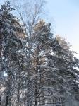 6.Йога.Зимние каникулы.Ледяной ожог.
