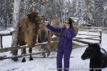 Отдых на зимние каникулы для взрослых и детей. Ледяной ожог-2013-42