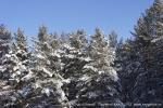 Отдых на зимние каникулы для взрослых и детей. Ледяной ожог-2013-25