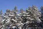 Отдых на зимние каникулы для взрослых и детей. Ледяной ожог-2013-26