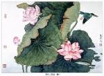 Йога-тур в Гималаи. Цветок Лотоса олицетворяет в Китае чистоту и целомудрие-9
