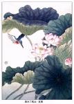 Йога-тур в Гималаи. Цветок Лотоса олицетворяет в Китае чистоту и целомудрие-4