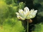 Йога-тур в Гималаи. Цветок Лотоса олицетворяет в Китае чистоту и целомудрие-31