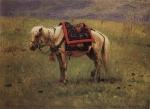 Гималайский пони, 1874