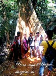 Йога-тур в Индию-18