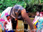 Йога-тур в Индию-20