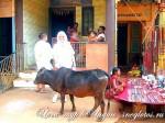 Йога-тур в Индию. Фото-отчёт март-2010
