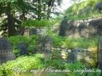 Усадьба Рериха. Йога-тур в Гималаи-30