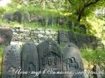 Усадьба Рериха. Йога-тур в Гималаи-31
