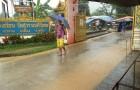 Фото-отчёт семинара-путешествия в Тайланд (Пхукет, Фестиваль Вегетарианцев. Тапасья-Путь аскезы). Октябрь-2011