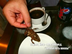 Путевые заметки. Таиланд. Страна Дурианов и жареных тараканов…