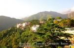 Йога-тур в Гималаи. Дхармасала-15
