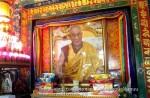 Йога-тур в Гималаи. Дхармасала-20