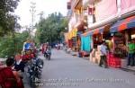 Йога-тур в Гималаи. Дхармасала-35