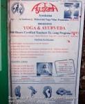 Йога-тур в Гималаи. Дхармасала-42