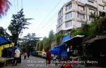 Йога-тур в Гималаи. Дхармасала-45