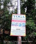 Фото-отчёт. Йога-тур в Гималаи Северной Индии. Дхармасала.