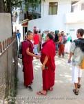 Йога-тур в Гималаи. Дхармасала-52