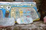 Йога-тур в Гималаи. Дхармасала-53