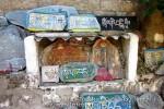 Йога-тур в Гималаи. Дхармасала-54