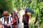 Йога-тур в Гималаи. Дхармасала-57