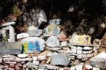 Йога-тур в Гималаи. Дхармасала-58