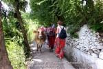 Йога-тур в Гималаи. Дхармасала-61