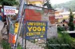 Йога-тур в Гималаи. Дхармасала-68