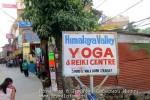 Йога-тур в Гималаи. Дхармасала-69