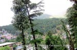 Йога-тур в Гималаи. Дхармасала-7