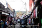 Йога-тур в Гималаи. Дхармасала-85