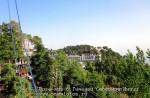 Йога-тур в Гималаи. Дхармасала-9