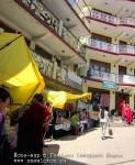 Йога-тур в Гималаи. Дхармасала-91