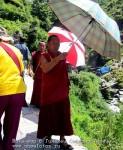 Йога-тур в Гималаи. Дхармасала-92